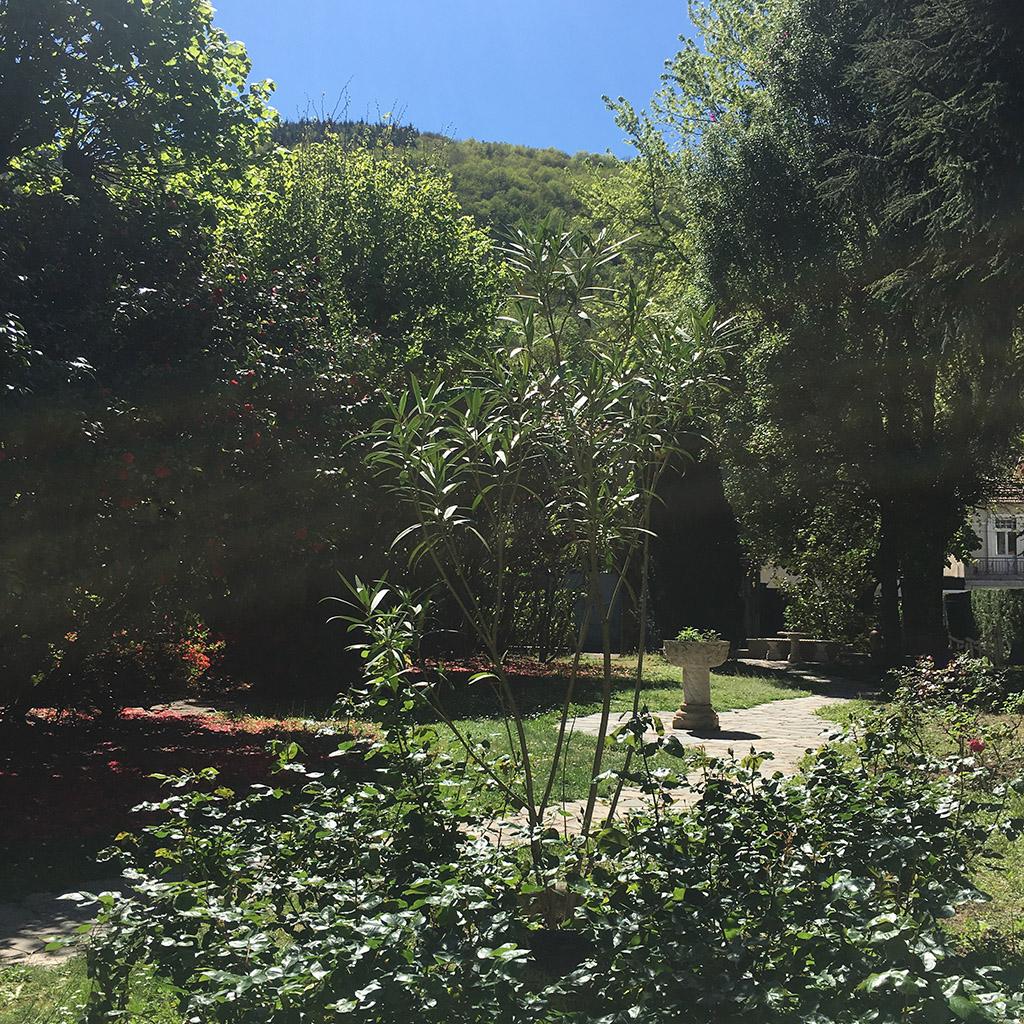 residence midi garden